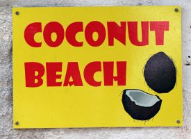 coconut beach by vw1956stock
