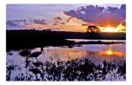 Sunset Over Naivasha by Indelibly-Yours