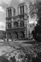 France Paris Notre Dame Cathedral 1970s by BlackWhitePictures