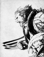 Wolverine by 2ngaw