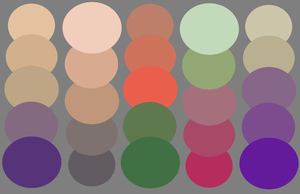 Cat Palettes by ee-palettes