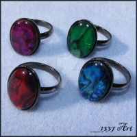 Paua Shell Rings by 1337-Art