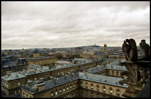 View Notre Dame by koryna