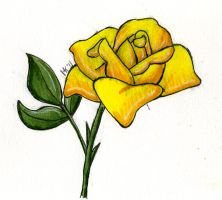 Yellow Rose of Texas by Nethilia