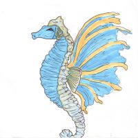 Winged Seahorse by GingerPudding