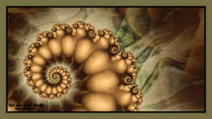 Four and a half Spirals by miincdesign