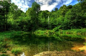 Hackfall Pond and Fountain by GaryTaffinder