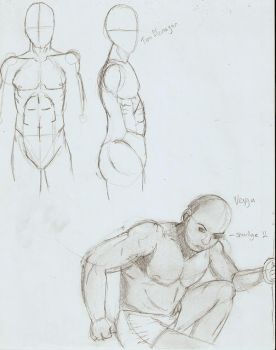 Male Anatomy by SkyTheArtist