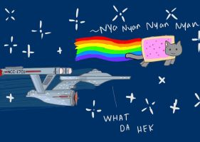 Enterprise and Nyan Cat by netnavi20x5