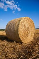 bale of straw by disast3r-1612
