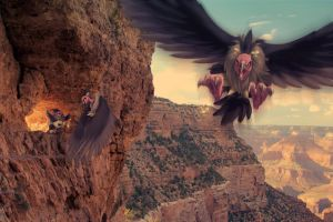 Wild Mandibuzz and Vullaby in Grand Canyon by Ninja-Jamal