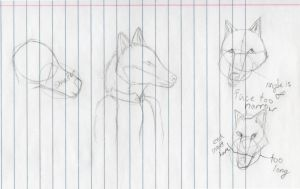 Wolf and fox head pratice by MoonandSky