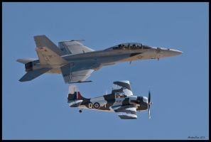 Navy Heritage Nellis 09 by AirshowDave