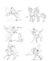 Spreading the word by Baron-Engel