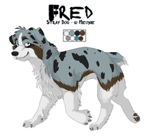 .: Stray Dog - Fred :. by Meoxie