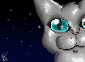 Cinderpaw: Not in StarClan Yet by WillowEscapee