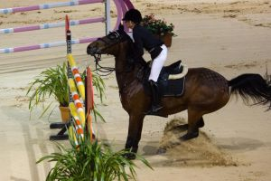 STOCK - Equitana 2013-366 by fillyrox