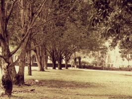 ITB's park by kutuubocah