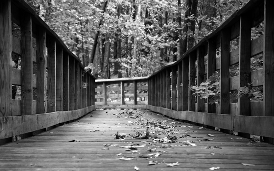Bridge to Autumn by clarson04