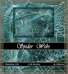 Spider Web Brushes by analeewon