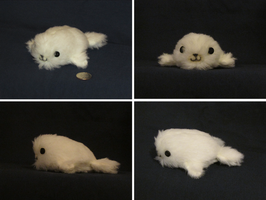 Seal Pup by Fiomay