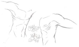 Male Torso Anatomy Sketches by BloodLust-Carman