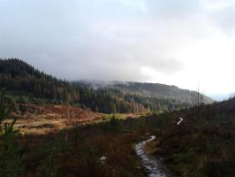 View from Hills above Aberfoyle by Squidgybuffalo