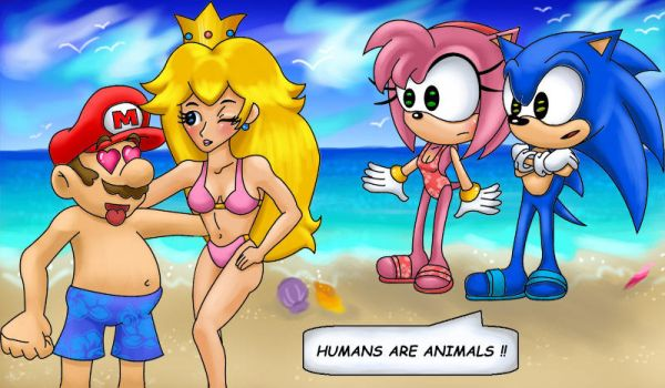 Sonic and Mario on the beach by chibipunk7231