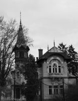 Small chateau by Werwolfin