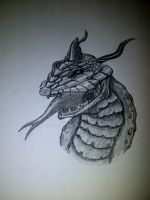 Dragon in progress 2... by ckatt01