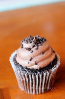 Triple Chocolate Cupcake by thebreat