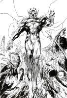 Jim Lee Wildcats by JonBolerjack