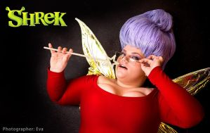 Shrek 2 Fairy Godmother cosplay by Matsu-Sotome