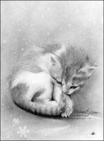 Bleak wintry kitty by Katerina-Art