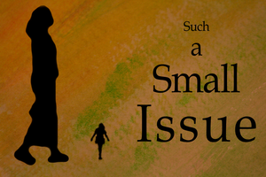 Such a Small Issue Cover by Ommin202