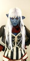 Dark Elf from Lineage by aurilianalence