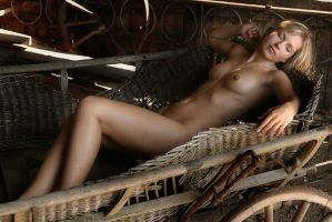 In a old barn 2 by jerrywhite