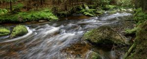 Forest Stream 1 by m4tyas