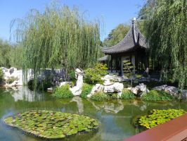 Chinese Garden Lotus Pond by ShipperTrish