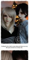 Hurricanes by Lavandula-BJD