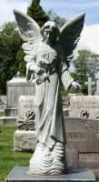 Mount Olivet Cemetery Angel 151 by Falln-Stock