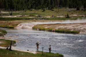 Fly fishing in Yellowstone Park by MNgreen