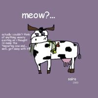 meowing cow by tripping