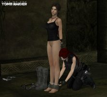 A Tomb Raider's Competition by honkus2