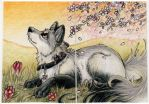 ACEO: Seras: Welcoming Spring by Duskit