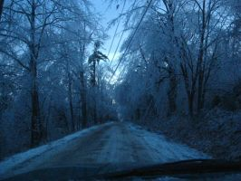 ice storm 08 by crazygardener