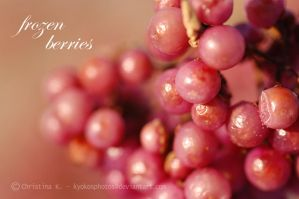 frozen berries by kyokosphotos