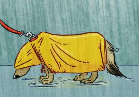 Dog Raincoat by Colonel-Crowe