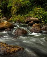 Let it FLOW I by afvoetomath