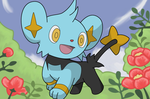 Shinx 2 by BlueYusei